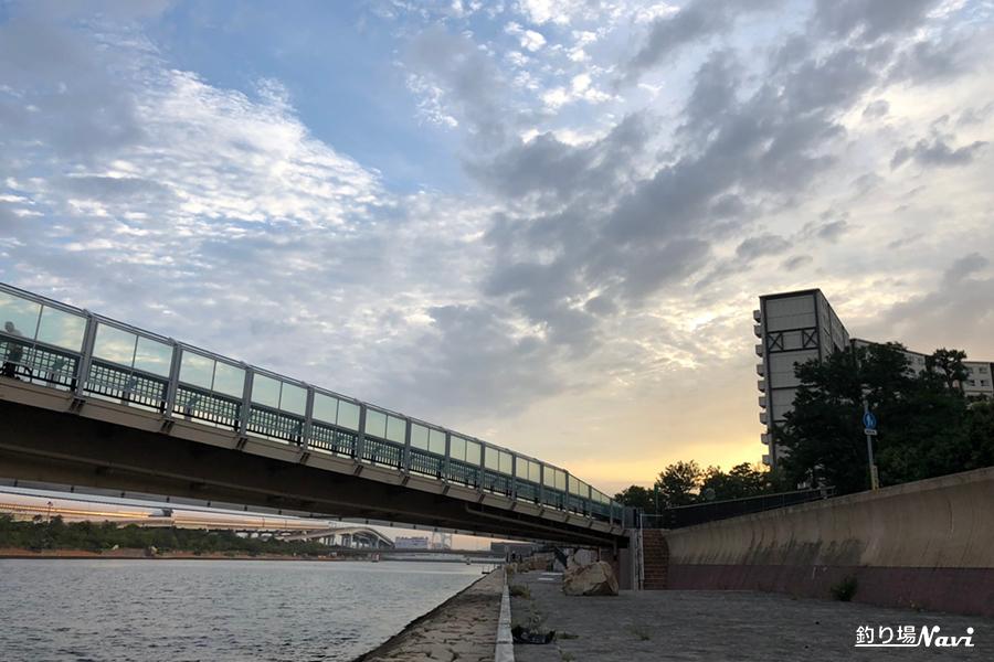 19.08.20南芦屋浜-宮川河口付近_190822_0001